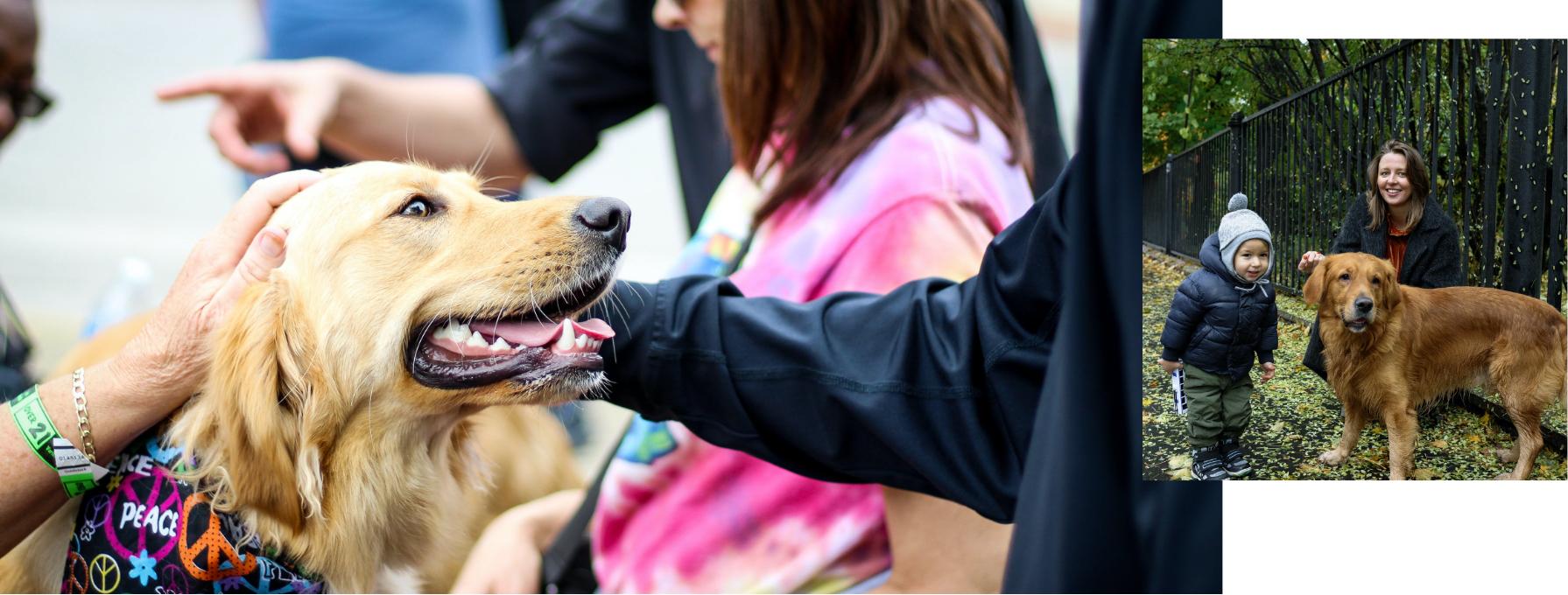 Imatge d'un gos amb família