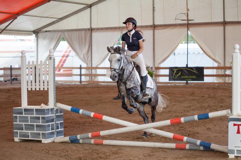L'Agència de Promoció de Ciutat Reus Promoció i l'Associació dels Amics dels Cavalls de les comarques de Tarragona han decidit canc...