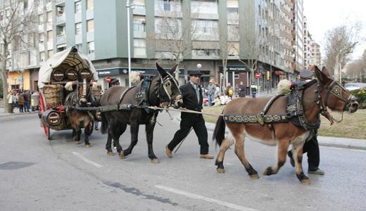 L'Associació d'Amcis del Cavall de les Comarques de Tarragona, en col·laboració amb l'Ajuntament de Reus a través de l'Institut Municip...