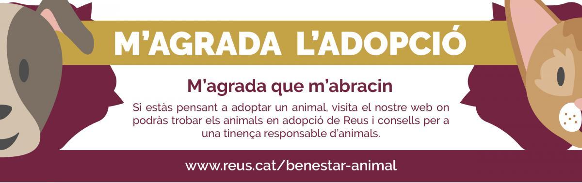 Accedeix a Adopció d'animals. Adopta Benestar Animal