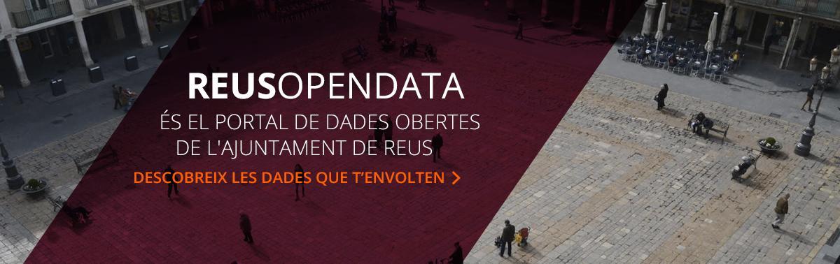 Accedeix a Opendata