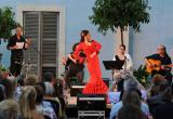 Alquimia Flamenco
