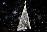 Arbre de Nadal 2019