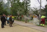 Màquina de vapor per eliminar males herbes
