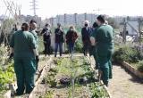 Visita als horts urbans del barri Sol i Vista