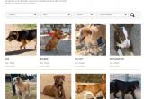Imatge web benestar animal