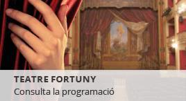 Accedeix a Programació de tardor al Fortuny