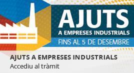 Accedeix a Ajuts empreses industrials