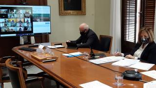 Sessió telemàtica del ple de l'Ajuntament de Reus