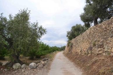 Marges de pedra seca