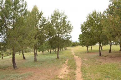 Parc del  Roquís