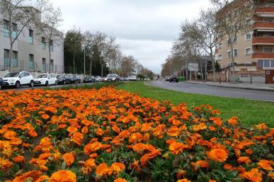 Avinguda de Sant Bernat Calbó