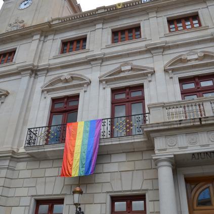 Accedeix a Foto d'arxiu del domàs LGTBI al palau municipal