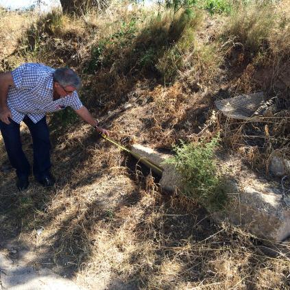 Accedeix a Imatge de la pedra fita al lloc on la van localitzar tècnics municipals de Medi Ambient. Foto: F. FERNÁNDEZ / MUSEUS DE REUS
