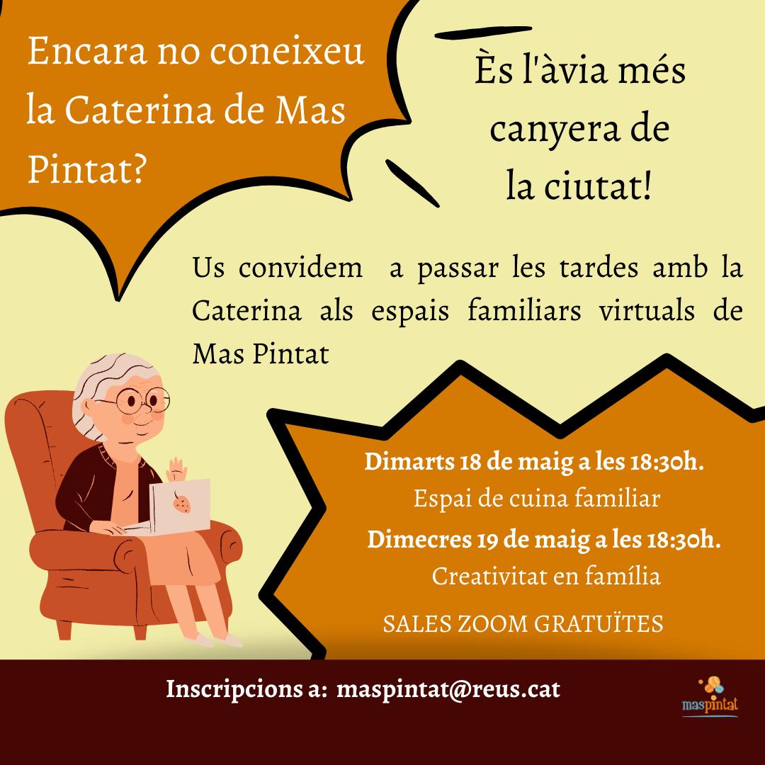ESPAI VIRTUAL MAS PINTAT CUINA I CREATIVITAT