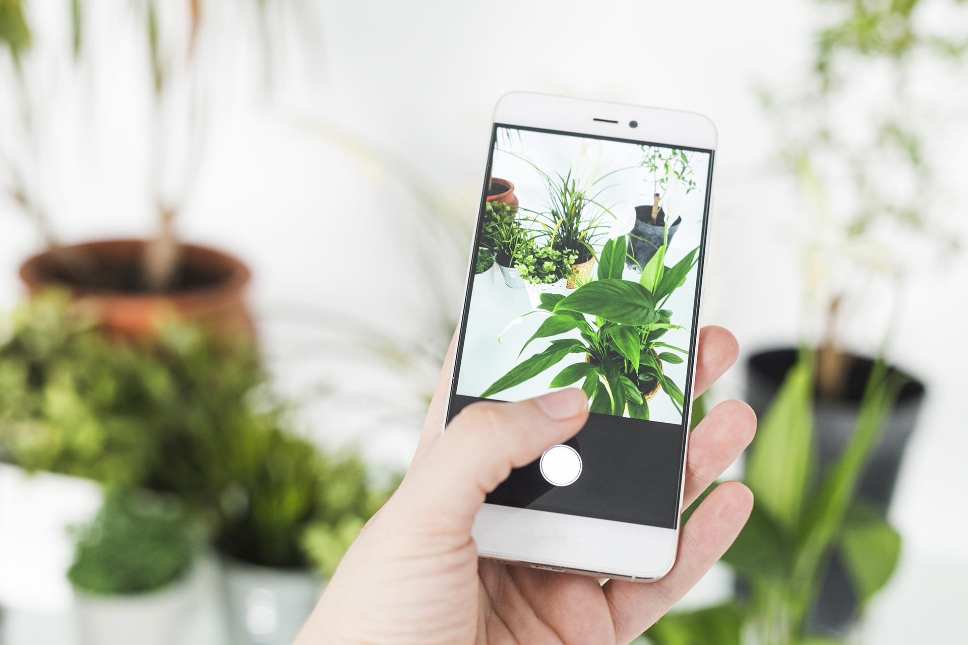 Taller de fotografia digital