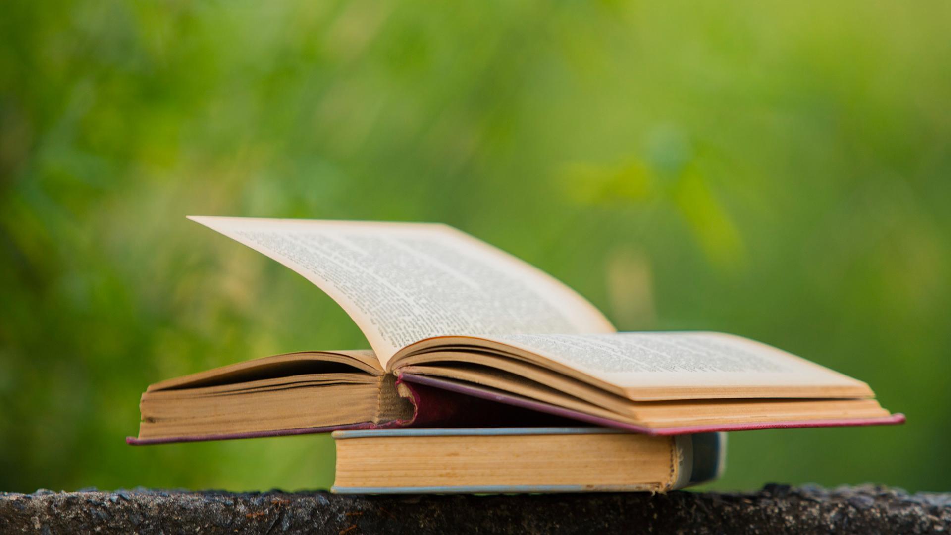 Biblioteca Central Xavier Amorós: Club de lectura B