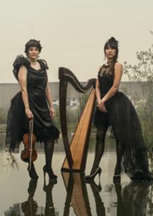 Vermusic · Concert de Formiga and Cigale