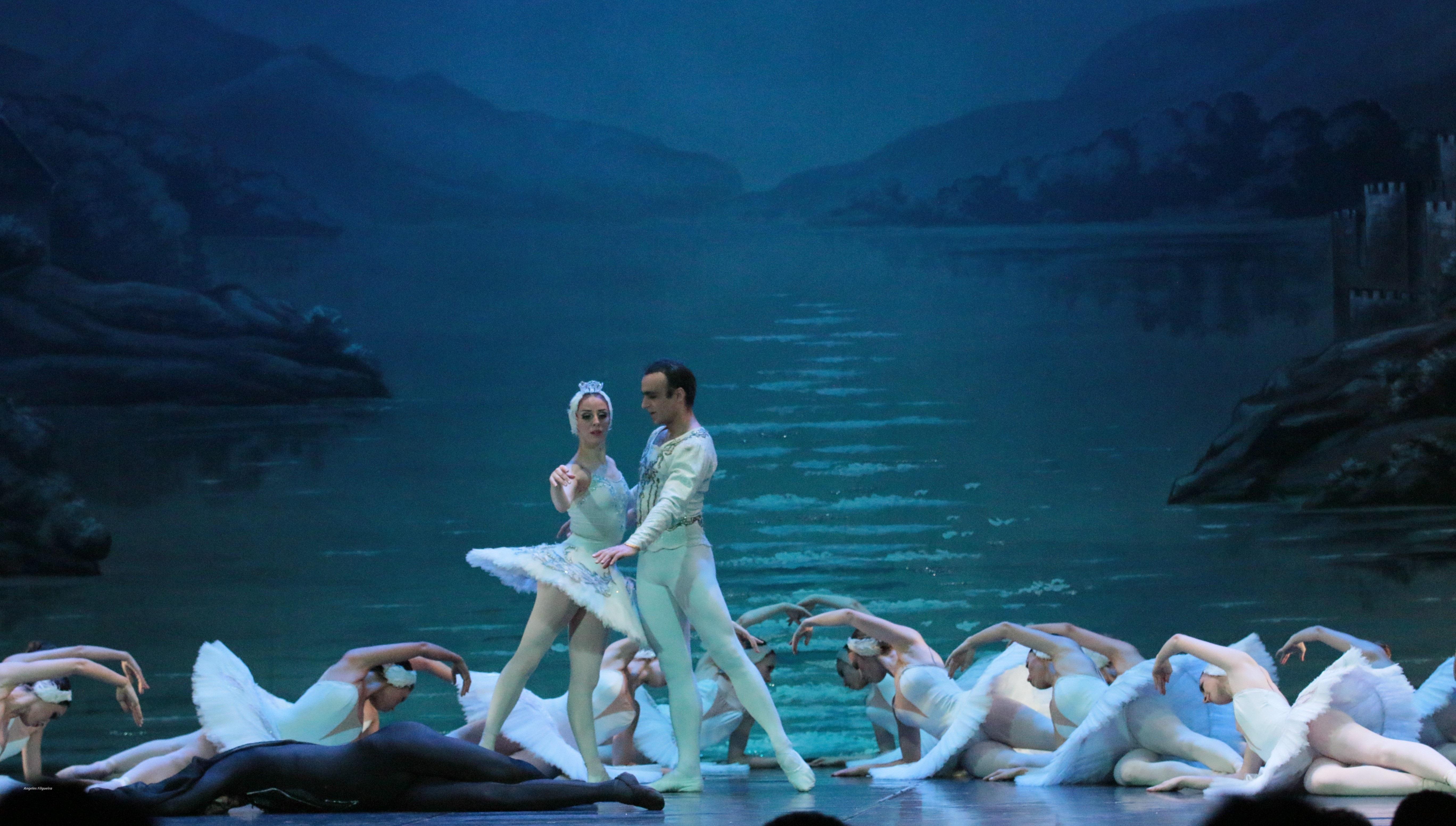 El llac dels cignes de Txaikovski