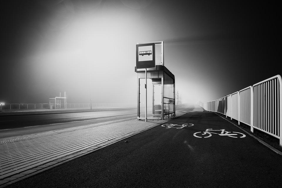 Pels carrerons del darrera (Projecte Bartrina 2020 - Jardí Casa Rull)
