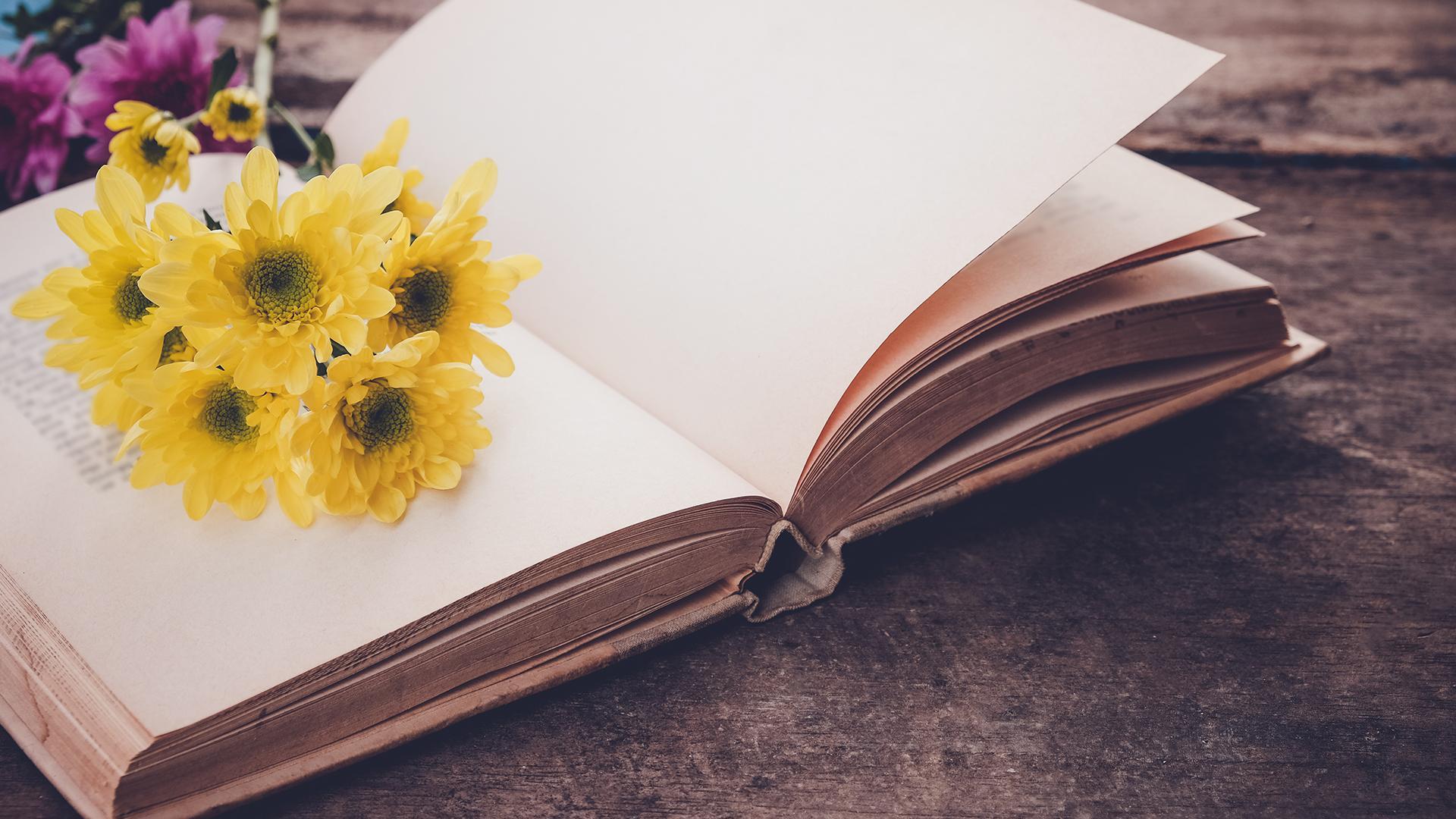 Biblioteca Central Xavier Amorós: Club de lectura de poesia